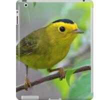 Wilson's Warbler iPad Case/Skin