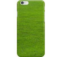 Lazy Summer iPhone Case/Skin