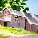Old Barn on Pavlica Rd. by Marriet