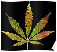 Marijuana Leaf Abstract Autumn Poster