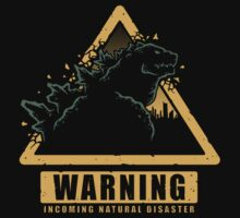 Incoming Natural Disaster! Kids Tee