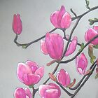 Magnolia XVI by Alexandra Felgate