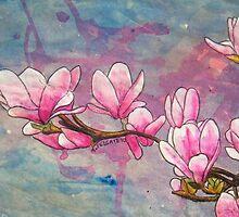 Magnolias XVIII by Alexandra Felgate