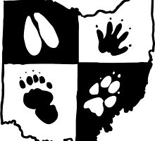 Ohio Furs (Black Logo) by infierna