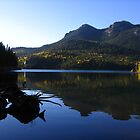 Gazing toward the fading summer, Rosemont Reservoir, CO 2010 by J.D. Grubb