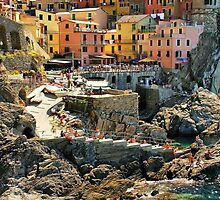 Manarola by Barbara  Brown