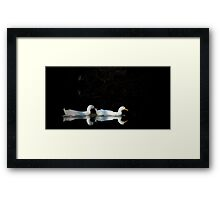 Midnight Swim Framed Print