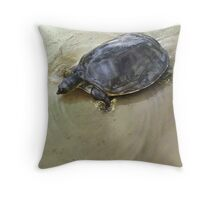 SENEGAL FLAPSHELL TURTLE Cyclanorbis senegalensis (NOT A PHOTOGRAPH OR PHOTOMANIPULATION) Throw Pillow