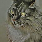 Portrait of Socks by Sally Sargent