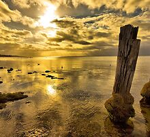 Golden Glow, Clifton Springs by Danka Dear