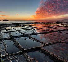 Tessellated Pavement Sunrise by John Harrison