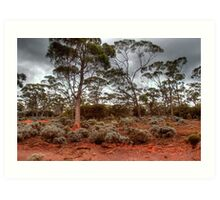 Red Earth, Gray Clouds Art Print