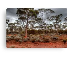 Red Earth, Gray Clouds Canvas Print