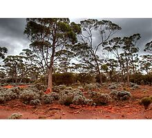 Red Earth, Gray Clouds Photographic Print