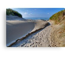 A path through the dunes Canvas Print