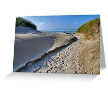 A path through the dunes Greeting Card