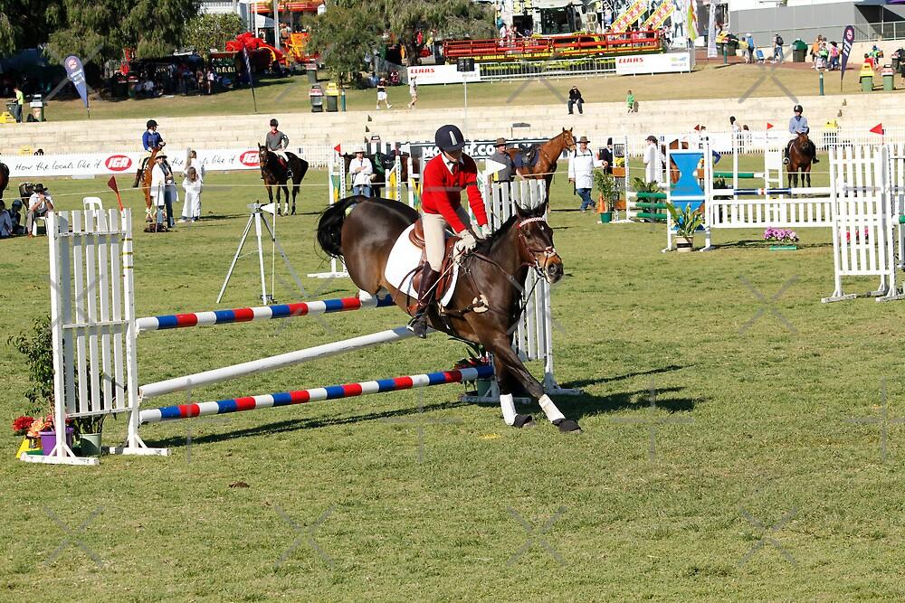Perth Royal Show - Show Jumper - Precise Landing by Sandra Chung