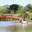 Japanese Garden 2 by jayded