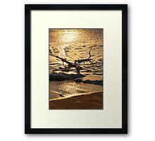 Marshmallow Coast Framed Print