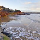 Anglesea Evening by Harry Oldmeadow