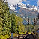 Rocky Mountaineer #1 by Liz Percival