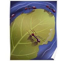 Gratitude of the ants to the leaf, for saving their life Poster