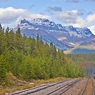 Rocky Mountaineer #2 by Liz Percival