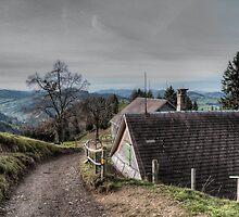 Swiss Hobbiton by Michal Lowenhoff