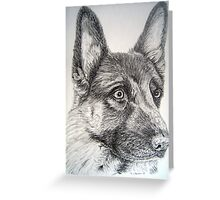 German Sheperd Dog Greeting Card