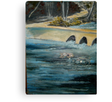Caney Creek Canvas Print