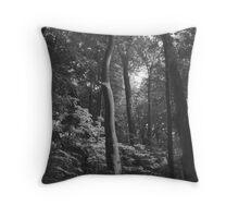 The Grandeur Of Nature Throw Pillow