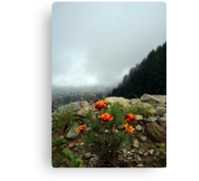 Flowers and the Valley! Canvas Print