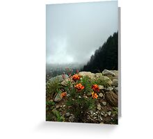 Flowers and the Valley! Greeting Card