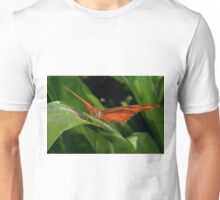 Julia Heliconian butterfly, (Dryas Iulia) Unisex T-Shirt