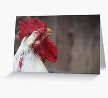 Old Rooster Crowing Greeting Card