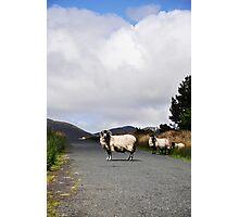 Road Block Photographic Print