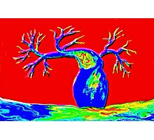 The Boab Tree - Acrylic on canvas Photographic Print