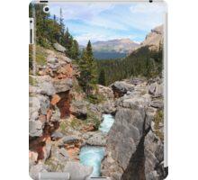 Bow canyon iPad Case/Skin