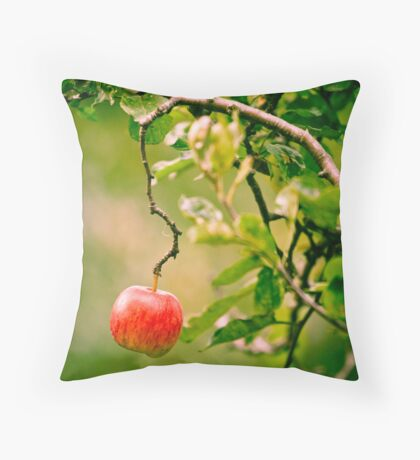 OnePhotoPerDay Series: 273 by L. Throw Pillow