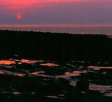 Bay of Fundy sunset by Harv Churchill