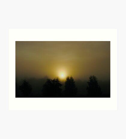 VSOP. ❤❤❤❤❤❤ .Chill out  -  sunrise . Sweden. Brown Sugar Story. Favorites: 3 Views: 1021. . Art Print