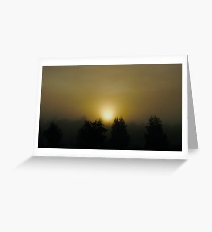 VSOP. ❤❤❤❤❤❤ .Chill out  -  sunrise . Sweden. Brown Sugar Story. Favorites: 3 Views: 1021. . Greeting Card