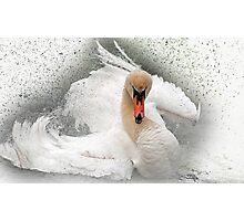 Attitude in white Photographic Print