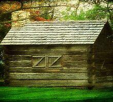 Mi Casa Su Casa ©  by Dawn M. Becker