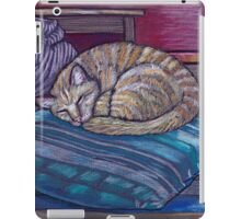 cat on a cushion  iPad Case/Skin