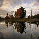 Autumn Reflection by BWS052