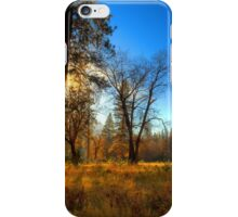 Yosemite National Park iPhone Case/Skin