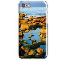 A Rocky Coastline iPhone Case/Skin