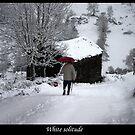 Calendar - 01 - January by Dulcina