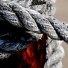 Tied together - for ever? by Susanne Van Hulst